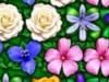 Flowers Games